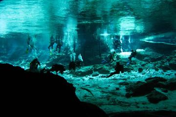 Cenotes 2-Tank Scuba Diving Adventure from Merida