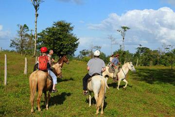 Horseback Riding Tour in Monteverde