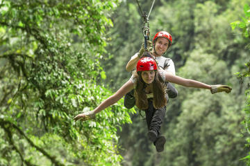 Congo Trail Canopy Tour from Playa...