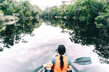 Overnight Noosa Everglades Canoe and Camping Tour from Noosa or...