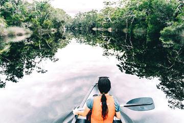 Overnight Noosa Everglades Canoe and...