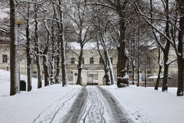 Private Helsinki Mental Asylum...