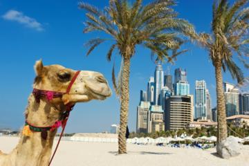 Dubai Summer Surprises Flexi Attractions Pass