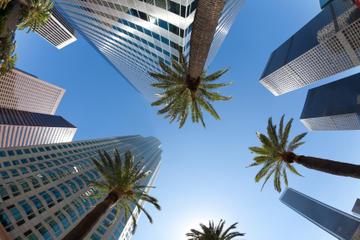 Excursión a la ciudad de Los Ángeles y excursión a las casas de...