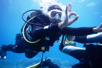 PADI Half Day Scuba Diving Course in...