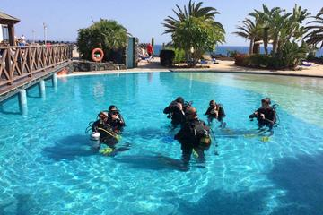 PADI Open Water Diver Course in...
