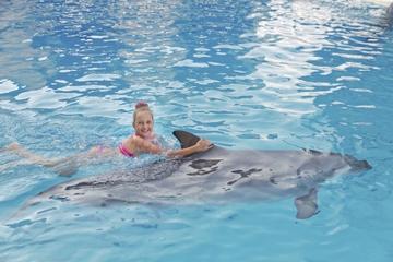 Baño con delfines en Ocho Ríos