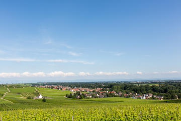 FINE WINES AND WONDERFUL VILLAGES HALF-DAY TOUR