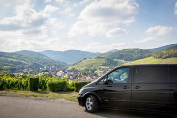 Full-Day Alsace Wine Tasting Small-Group Tour from Strasbourg