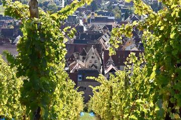 Private Custom Tour of Alsace Villages with Wine Tasting from Colmar