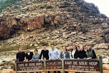 Ultimate Cape Point Full-Day Tour ...