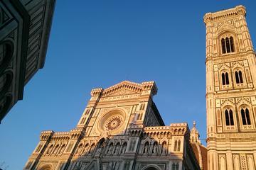 Livorno Shore Excursion: Florence and Pisa Private Day Trip