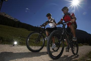 Full-Day Mountain Bike Tour from...