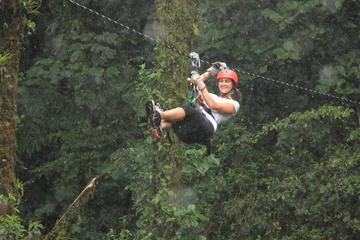 Canopy Tour from Monteverde