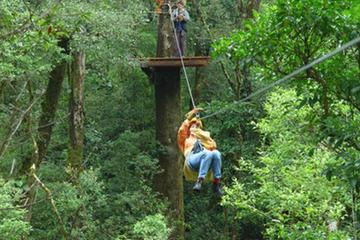Canopy Tour from Puerto Viejo of Sarapiquí