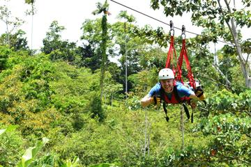 Canopy Zipline Tour with Superman Flight from Puerto Viejo or Cahuita
