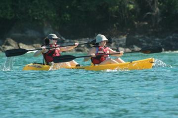 Damas Island Kayak Tour with Lunch from Manuel Antonio