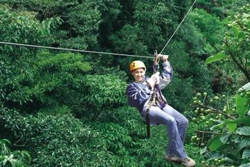 & Monteverde Cloud Forest Zipline and Hanging Bridges Tour 2018