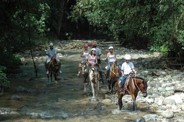 Horseback Riding from Manuel Antonio