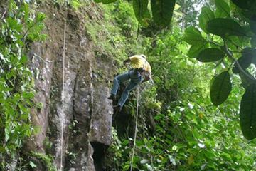 Rappel Tour from Puerto Viejo of Sarapiquí
