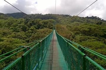 Small-Group Hanging Bridges 2-hour Tour from Monteverde