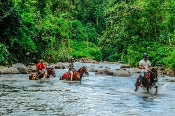 Small-Group Tour: Horseback Riding in Arenal River from La Fortuna