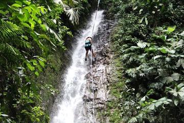 Waterfall Climbing Tour from Jacó