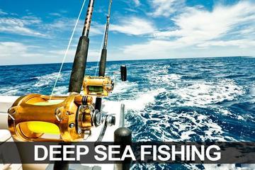 Excursiones de pesca en miami beach consulta 10 for Deep sea fishing miami