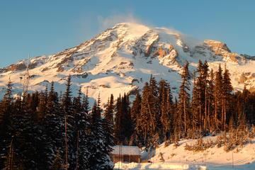 Viagem diurna a Mt Rainier, saindo de...