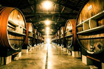 Vermouth Cellar Tour in Marseillan