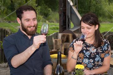 Exclusive Central Otago Wine Tour - departs Queenstown