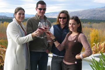 Excursões às vinícolas da região central de Otago, partindo de...