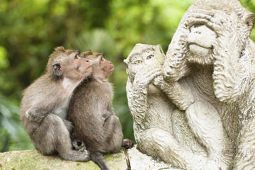Bali Monkey Forest, Mengwi Temple and...
