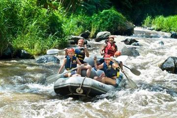 Elephant Safari Park und White-Water Rafting-Abenteuer