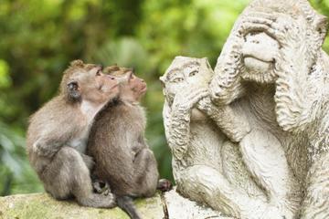 Nachmittagstour: Bali Affenwald, Mengwi-Tempel und Tanah Lot