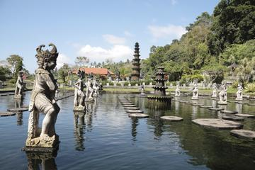 Royal Karangasem Heritage Tour from...
