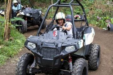 White Water Rafting and Jungle Buggies