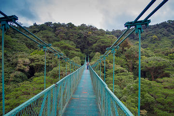 & Selvatura Park Hanging Bridge Canopy Tour in Monteverde 2018