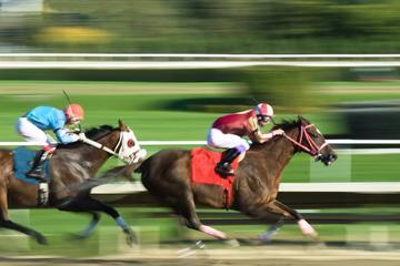 Hesteveddeløp ved Hong Kong Jockey Club Happy Valley