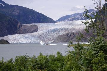 Avistamiento de ballenas, tour a la fábrica de cerveza, glaciar...