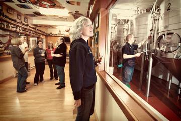 Excursão Terrestre de Juneau: observação de baleias, excursão pela...