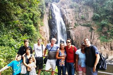 Dagstur från Bangkok till Khao Yais nationalpark och elefantridning