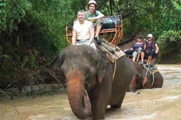 Elefantenreiten in Pattaya