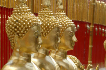 Excursion d'une demi-journée de la ville de Chiang Mai et des temples