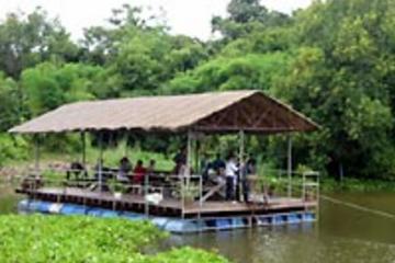 Halbtagestour ab Pattaya mit Elefantenritt und Dschungelausflug