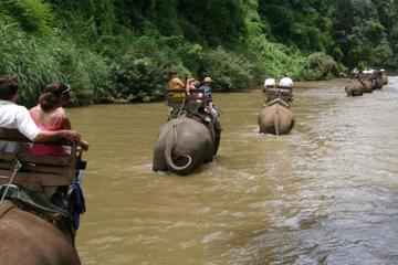 Jungletocht naar de olifanten bij Chiang Dao en wildvatervaren op de ...