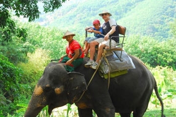 Phuket, halvdags safaritur