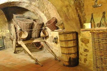 Ribera del Duero Underground Wine Museum Ticket