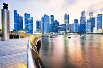 シンガポール到着送迎:空港からクルーズまたはフ…