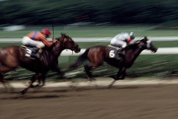 シンガポール ターフ クラブ:競馬とVIPラウ…